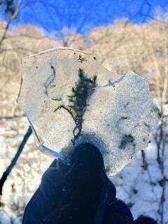 西沢渓谷 冬の写真・画像素材[3843799]