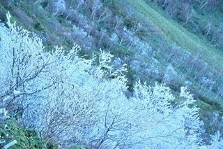 那須岳 登山の写真・画像素材[3843977]