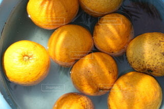 水に浮かぶオレンジの写真・画像素材[3949674]