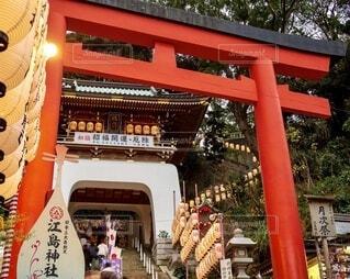 江ノ島神社 鳥居と提灯 参道の写真・画像素材[4031684]