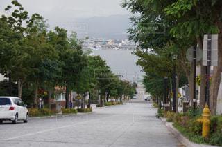 北海道の写真・画像素材[293828]