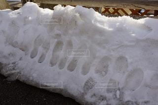 冬の写真・画像素材[401612]