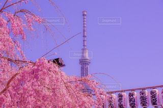 近くの塔のアップの写真・画像素材[1866002]
