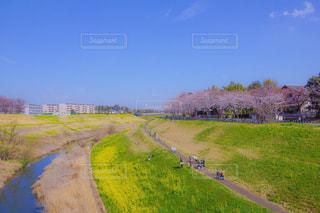 芝生のフィールドを流れる川の写真・画像素材[1878859]