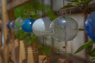 植物の花瓶の写真・画像素材[2303132]