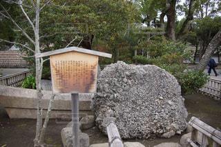 岩壁の隣に座っている石のベンチの写真・画像素材[2800696]