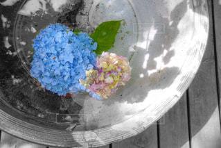 皿の上のケーキの写真・画像素材[3230467]