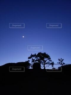 夜の公園と月の写真・画像素材[4175482]