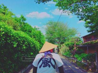 No.164872 風景
