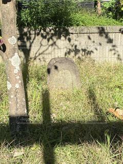 庭園散歩で出会った石像さんの写真・画像素材[3871681]