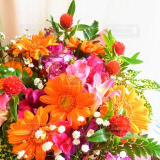 花束の写真・画像素材[162347]