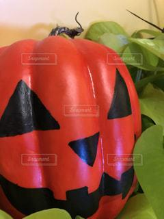 ハロウィンのかぼちゃの写真・画像素材[1564216]