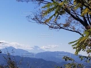 高尾山からの富士山の写真・画像素材[3881847]