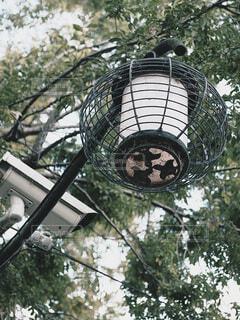 街角の街路灯の写真・画像素材[3884399]