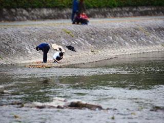 河川敷で佇む人たちの写真・画像素材[3884521]