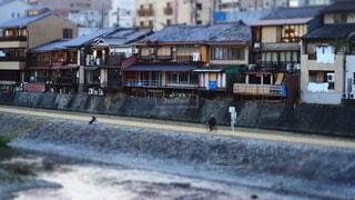 鴨川河川敷の風景の写真・画像素材[3919389]