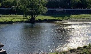 反射する川の水面の写真・画像素材[3888726]