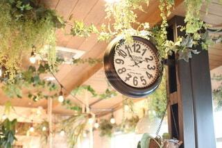 ナチュラル時計の写真・画像素材[3888919]