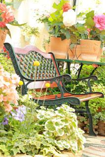 ガーデンのおしゃれなベンチの写真・画像素材[3894078]