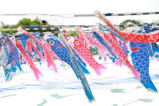 たくさんの鯉のぼりの写真・画像素材[3894077]