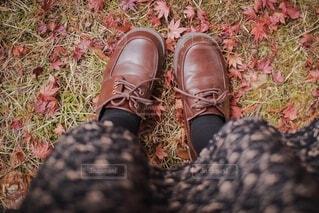 もみじを踏みしめる女の子の靴の写真・画像素材[3895302]