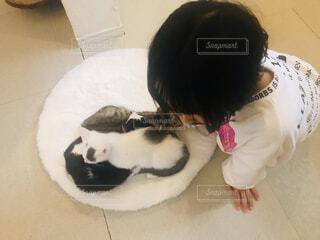 眠っている子猫と、子どもの写真・画像素材[4083080]