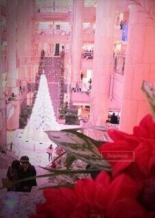 クリスマスツリーの写真・画像素材[3967375]