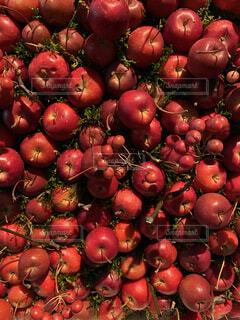 果実の山の写真・画像素材[3912040]