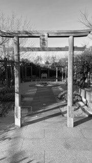 博多駅の屋上、ツバメ広場❗️鳥居😊の写真・画像素材[4073462]