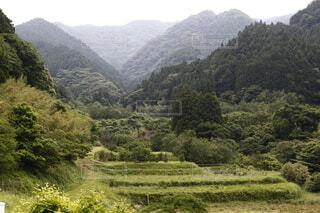 糸島市瑞梅寺ダム付近の山。の写真・画像素材[4483096]