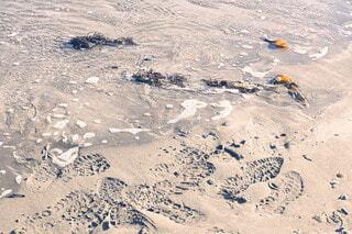 砂浜に残された足跡の写真・画像素材[3901250]