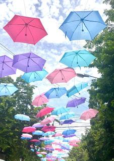 カラフルな傘の写真・画像素材[1491545]