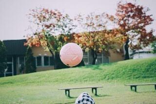 投げられたボールと頭の写真・画像素材[4127630]