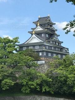 岡山城の写真・画像素材[3931184]