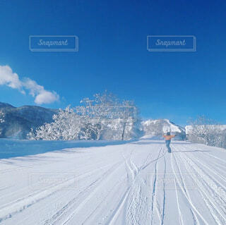 雪の中でスキーをして国を横断する人々のグループの写真・画像素材[4039036]