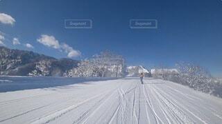 雪に覆われた道路の写真・画像素材[4039035]