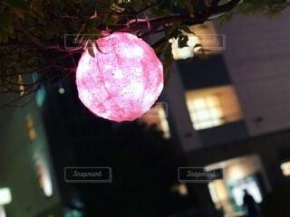 ピンクの球体の写真・画像素材[3930989]