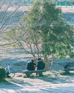 川辺で青春の写真・画像素材[997539]