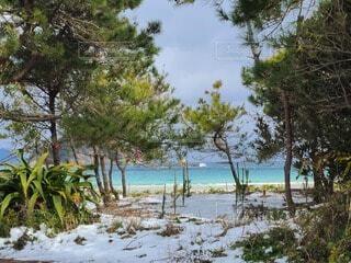 雪と海の写真・画像素材[4041180]