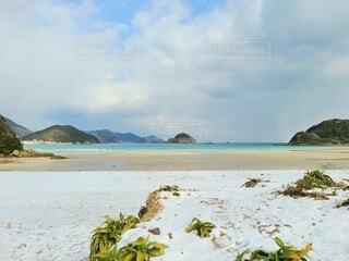 雪と海の写真・画像素材[4041179]