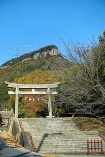高松屋島神社の鳥居と屋島山上の風景の写真・画像素材[3945049]
