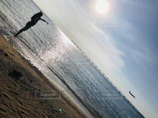 海辺で飛行機を見つけたの写真・画像素材[3946463]