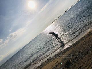 浜辺を飛ぶ鳥の群れの写真・画像素材[3946468]