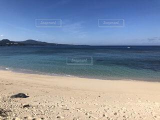 水域の隣の砂浜の写真・画像素材[3946774]