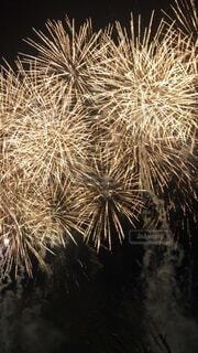 空の花火の写真・画像素材[3949766]