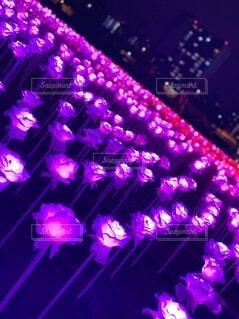 舞台の前に紫色の光が当たっての写真・画像素材[3952943]
