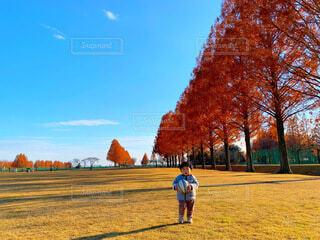 広い公園でボール遊びする子供の写真・画像素材[3956516]