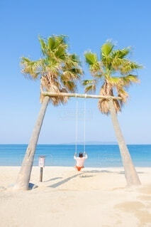 ヤシの木があるビーチの写真・画像素材[4023357]