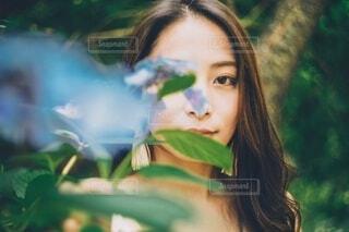 紫陽花と女性の写真・画像素材[4023416]