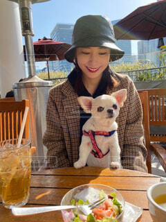犬とランチの写真・画像素材[4239461]